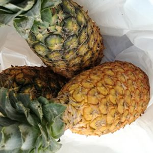 PINEAPPLE - DOZEN