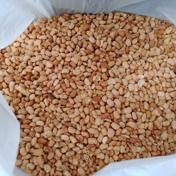 BEANS -OLOYIN (honey) - 4 Litres bucket - 24 Hours Market | Lagos, Nigeria